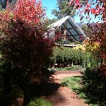 remote accommodation, permaculture garden